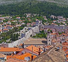 Across the Old Town, Dubrovnik, Croatia by Margaret  Hyde