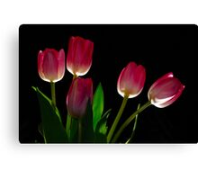 Twirler's Tulips Canvas Print