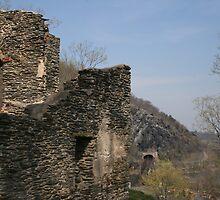 Rustic Ruins  by AndreaLStuart