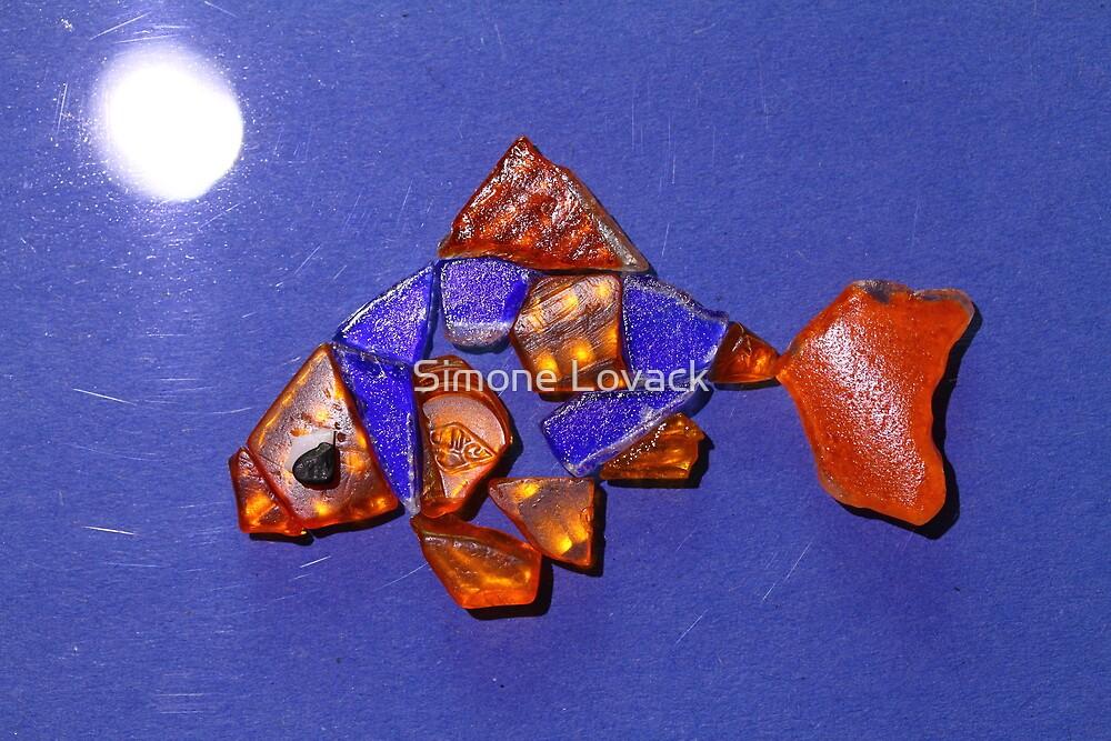 Freddie the Goldfish by Moonlight by Simone Lovack