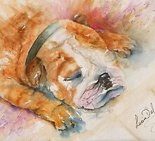 Sleep Enzo by LuciaM