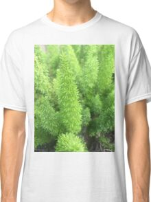 Green Shrub  Classic T-Shirt