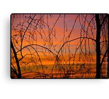 Perfect Sky Canvas Print