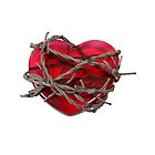 Barbed Wire Heart by Penywise