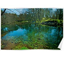 River Reflections Poster