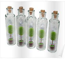 Nature Preserve Jars Poster