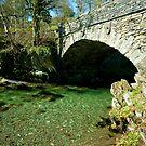 Bridge over Elterwater by John Hare