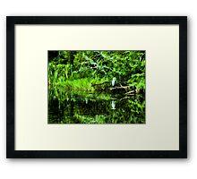 Carolina Wetlands Framed Print