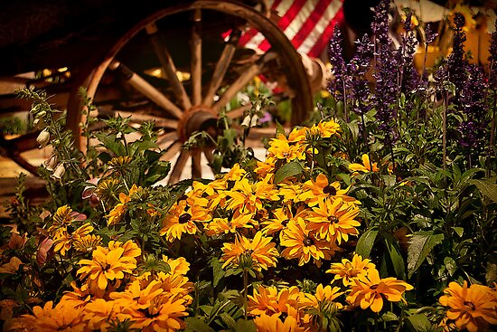 Philadelphia Flower Show. Garden. by vadim19