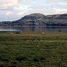 A View From Loch Leven Heritage Trail by biddumy
