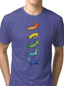 Watercolor Dachshunds Tri-blend T-Shirt