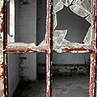 Kings Park Psychiatric Center -  looking in by Kristina Gale