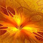 Phoenix by nclames