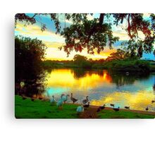 Ululah in a different light Canvas Print