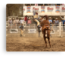 Rodeo Cowboy is Thrown from his Horse Canvas Print