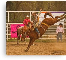Rodeo A Wild Horse Kicks Its Back Legs High in the Air Canvas Print