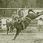 Cowboy Rides a High Kicking Bronco by Buckwhite