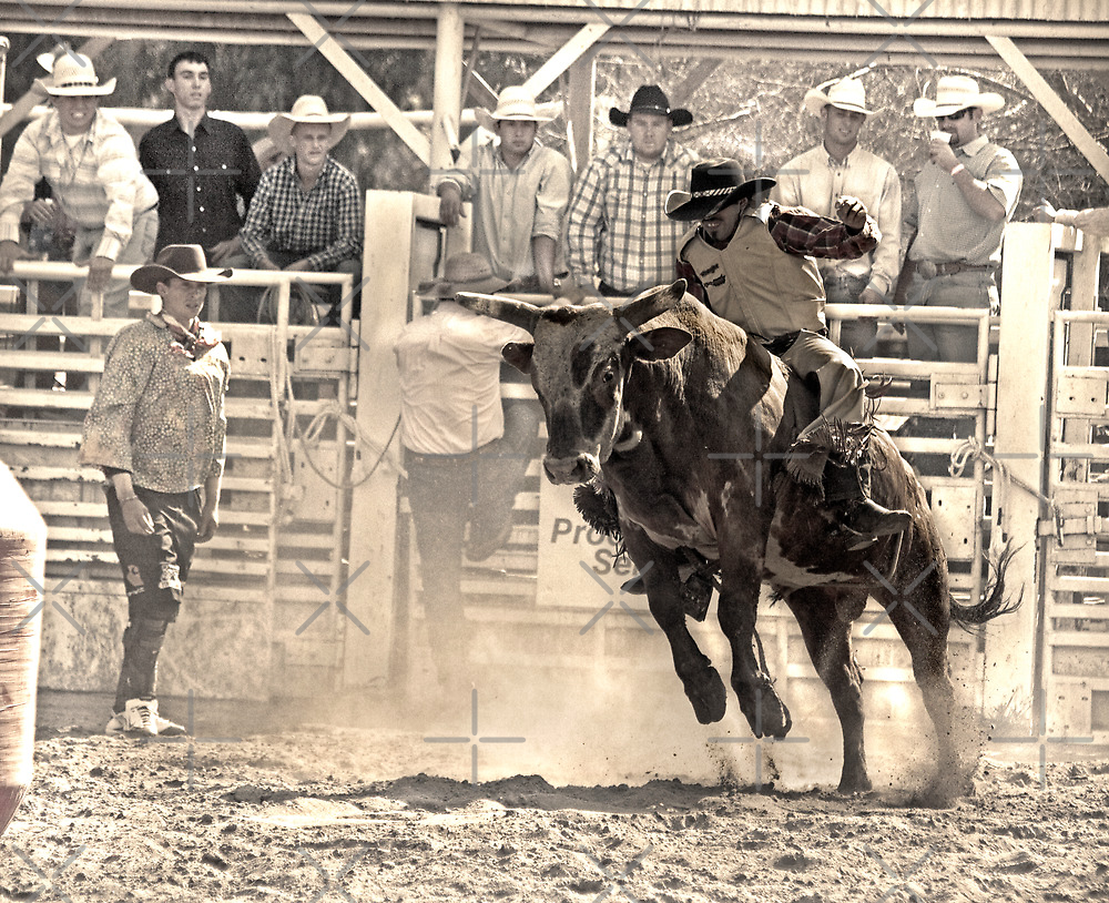 A Rodeo Cowboy Rides his Bull by Buckwhite