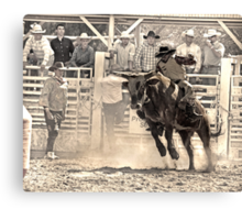 A Rodeo Cowboy Rides his Bull Canvas Print