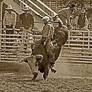 A Rodeo Cowboy Riding His Bull by Buckwhite