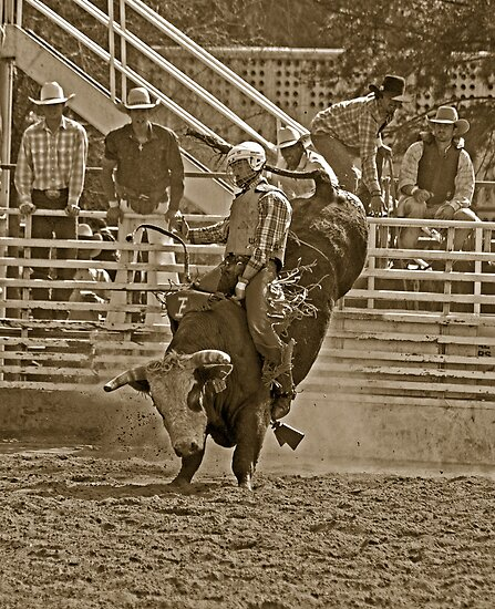 A Rodeo Cowboy Riding His Bull by Buckwhite