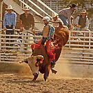 Rodeo by Buckwhite