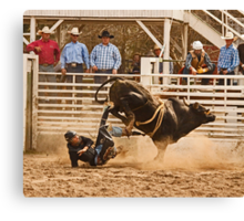 Rodeo Cowboy is Thrown from His Bull Canvas Print