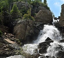 Waterfall in Glacier National Park by Fay Dowling