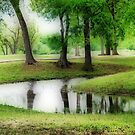 Lets Play Golf by Pat Moore