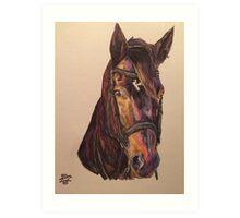 Dark Bay Dressage Horse Art Print