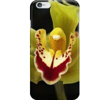 Wonderful Green Orchid iPhone Case/Skin