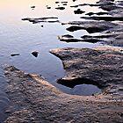 Slippery Path by Rhonda F.  Taylor