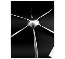 Star Light - Spoons Still Life Poster