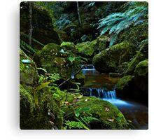 The Brook - Terrace Falls Canvas Print