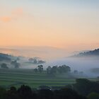Early Start by Andrew Leighton