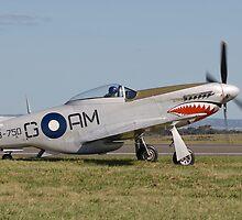 P-51 Mustang by Bairdzpics