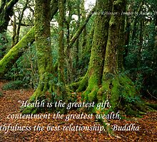 Health - Moss Covered Antarctic Beech Trees with Buddha Quote by Andrea Robinson