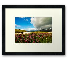 Flower before the Storm Framed Print