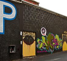 No Laughing Matter Now.....P is for Parking! by Helen Vercoe
