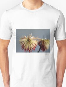 Dried out Unisex T-Shirt