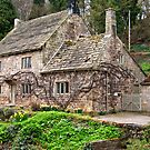 Fountains Cottage by Trevor Kersley