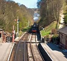 Approaching Goathland Station by Trevor Kersley