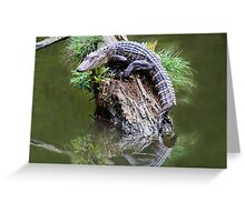 Baby Alligator in the Marsh Greeting Card