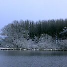The Pond in Winter by Trevor Kersley