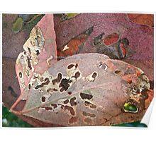 Leaves behind leaves 2 Poster