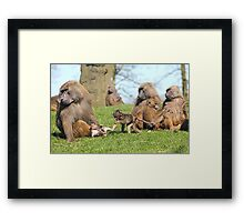 The Meeting Of The Nannies Framed Print