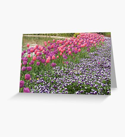 Tulips and Pansies Greeting Card