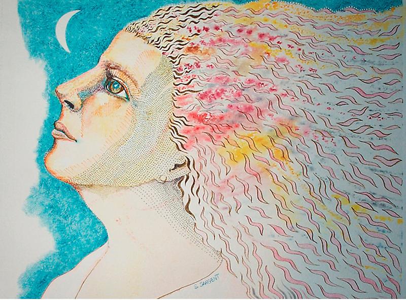 Stargazer by Sally Sargent