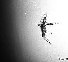 Night Creature by Celia Michel
