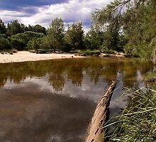 Nepean River in Yarramundi Reserve, NSW, Australia by elmerperez